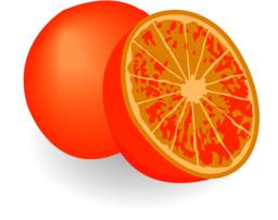 Oranges isolated on a white background Vector