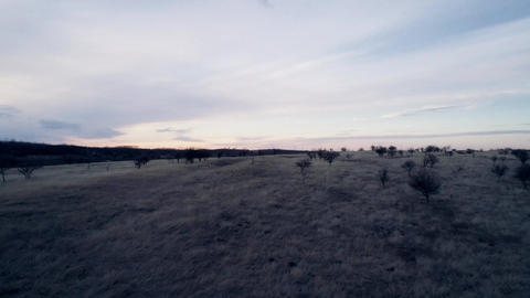 Landscape small hills Dried grass Evening Windmills in the distance Drone shot Footage