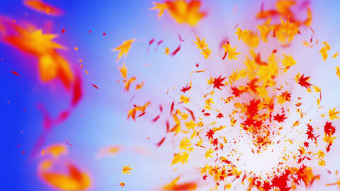 Vortex from colorful maple and leaves. Spiral shiny particle of autumn leaves. Dancing leaf. CG動画素材