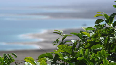 Royalty Free Stock Video Footage of Dead Sea coastline and foliage shot in Israe Footage