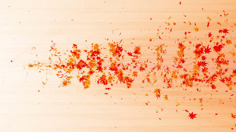 Vortex from colorful maple and leaves. Spiral shiny particle of autumn leaves. Dancing leaf. Animation