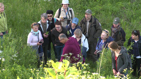 Experienced guide tell tourist people about rare species of plants and flowers Live Action