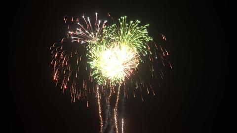 Fireworks 3DCGAnimation 1