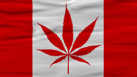 Canadis Concept for Marijuana Legalization in CanadaOn October 17, 2018, Canada formally legalize Animation