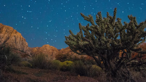 Timelapse shot of the Nevada desert at night Footage