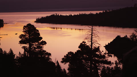 Static shot of sun setting over Lake Tahoe with silhouetted trees in the foregro Footage