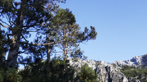 Tilting shot of mountain range and trees near Lake Tahoe, California Footage