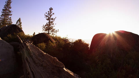 Upward shot of rocks, pine trees, and the sun at sunset Footage