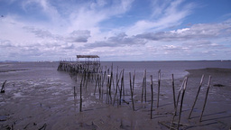 Old abandoned wooden fishing port with low tide, slider shot Footage