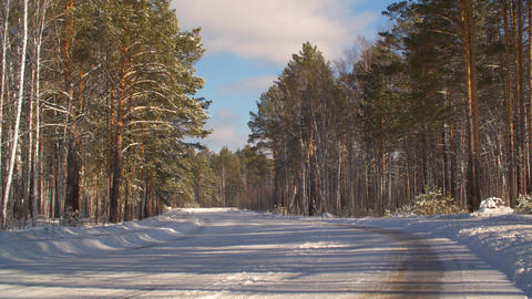 Empty car road and snowy forest in countryside at winter. Winter nature concept Footage