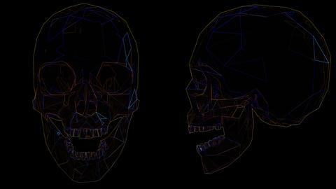 4K Crystal Skulls Loop with Transparent Background Comic Animation