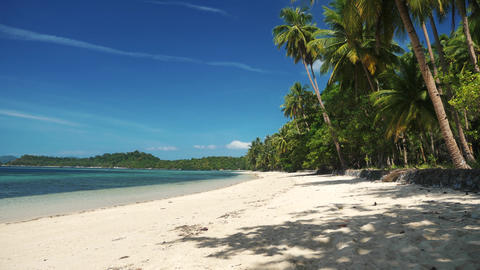 Beautiful tropical beach with coconut palm trees white sand and blue water Footage