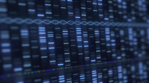 DNA analysis medical software running. Modern medicine or genetics related Live Action