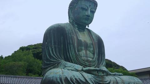 Most famous landmark in Kamakura - The Great Buddha Daibutsu Live Action