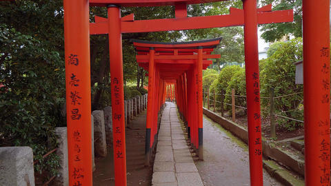 Impressive path covered by red gates at Nezu Jinja Shrine in Tokyo Live Action