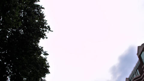 Low angle view of trees against cloudy sky in London, England Footage