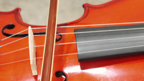 Close-Up Of Musician Playing Violin, Classic Music Footage