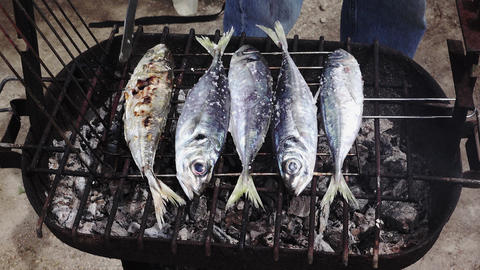 Cooking Fish on Barbeque Live Action