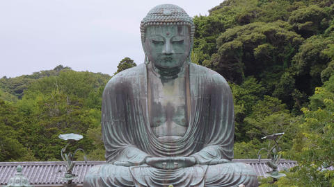 Most famous landmark in Kamakura - The Great Buddha Daibutsu Live Action