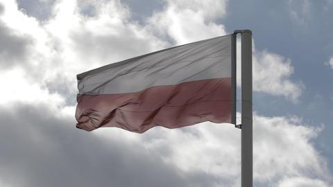 Flag of Poland Footage