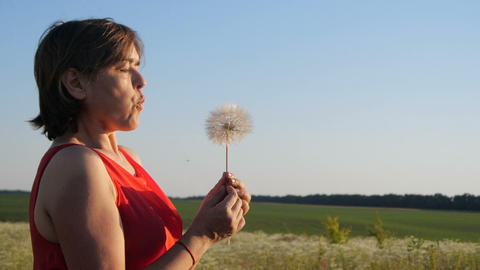 Inspired woman blowing on a dandelion with flying florets in a field in slo-mo Live Action