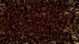 Coffee Beans Animation