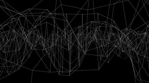 Abstract White Lines Background, Lattice On A Black Background. 3D Animation CG動画
