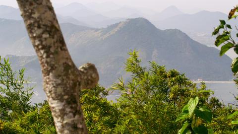 Static shot of mountains in Rio de Janeiro, Brazil Live Action