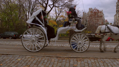 Slow panning shot of horse drawn carrigaes in NYC Footage