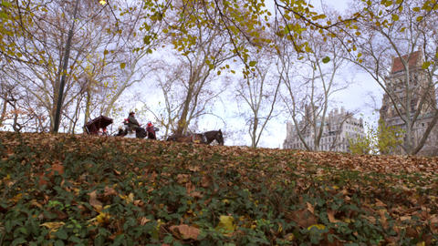 Panning shot of horse drawn carriages form the bottom of a hill Footage
