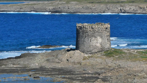 La Pelosa Beach In Sardinia 0
