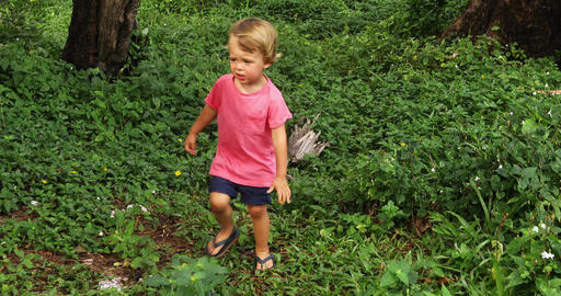 Baby walking through path in exotic jungle Archivo