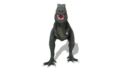 Dinosaur T-REX(Tyrannosaurus)