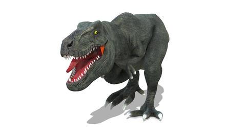 Dinosaur T-REX(Tyrannosaurus) 1