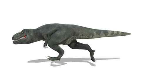 Dinosaur T-REX(Tyrannosaurus) 2