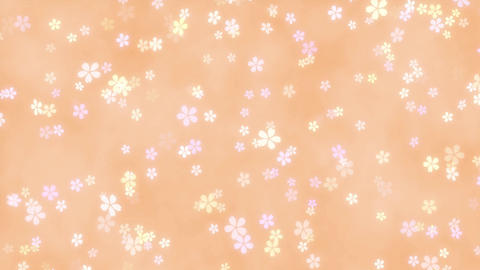 CherryBlossoms loop 03 Animation