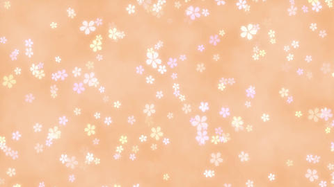 CherryBlossoms loop 08 Animation
