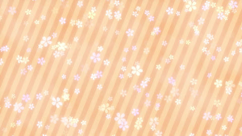 CherryBlossoms loop 13 Animation