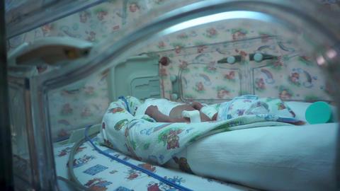 Neonatal intensive care unit. Neonatal incubator Footage