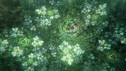 Dreamy Fractal Flowers With Leaves Slowly Turning and Blossoming CG動画素材