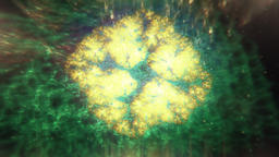 Abstract Symmetric Fractal Glowing Lichen Pattern Slowly... Stock Video Footage
