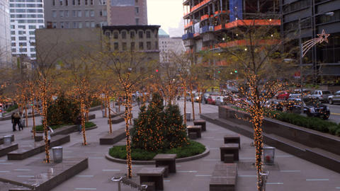 Panning shot of decorated trees with lights in New York City Footage