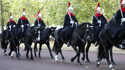 Royal Guard on horse walking in parade Footage
