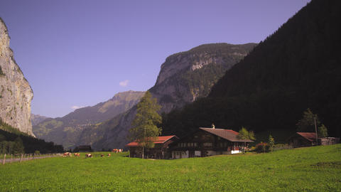 Swiss farm in Lauterbrunnen Valley Footage