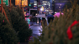 Christmas tree being sold on the streets of new york Footage