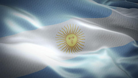 Realistic flag of Argentina waving with highly detailed fabric texture Live Action