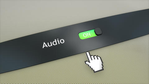 Application setting Audio, Stock Animation
