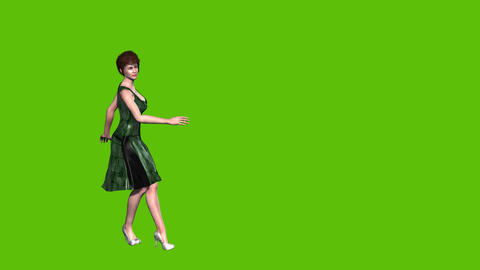 17 animated cartoon model dance Animation