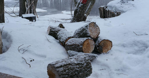 winter landscape snowfall Footage