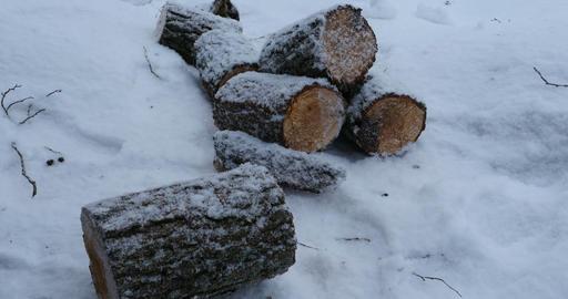 firewood winter landscape Footage